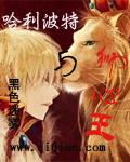 哈利波特与狮心王