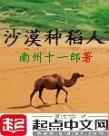 沙漠种稻人