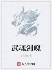 小说《武魂剑魄》