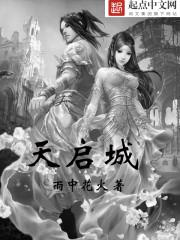 小说《天启城》