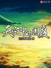 小说《天空中的国度》