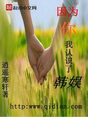 小说《因为你,我认识了韩娱》