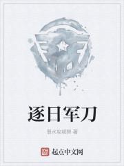 小说《逐日军刀》