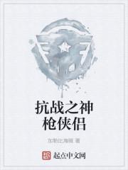 小说《抗战之神枪侠侣》
