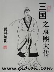 小说《三国之袁熙大传》
