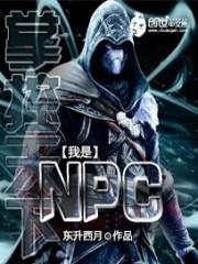 小说《掌控天下之我是NPC》