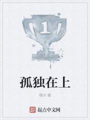 小说《孤独在上》