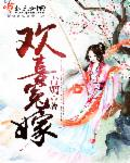 小说《欢喜冤嫁》