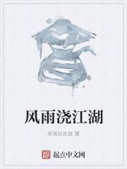 小说《风雨浇江湖》