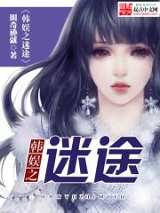 小说《韩娱之迷途》