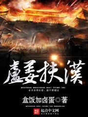 小说《卢姜扶汉》