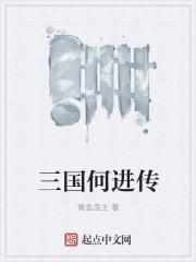 小说《三国何进传》