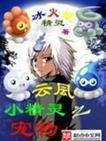 小说《宠物小精灵之云凨》