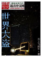 小说《世界大盗》