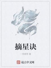小说《摘星诀》