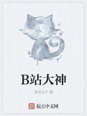 小说《B站大神》
