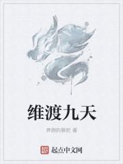 小说《维渡九天》