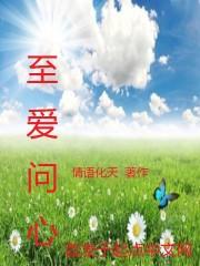 小说《至爱问心》