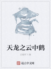 小说《天龙之云中鹤》