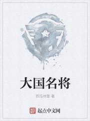 小说《大国名将》
