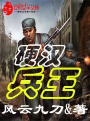 小说《硬汉兵王》
