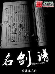 小说《名剑谱》