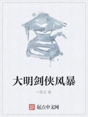 小说《大明剑侠风暴》