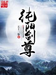 小说《纯阳剑尊》