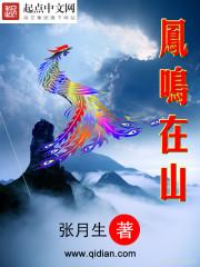 小说《凤鸣在山》