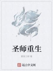 小说《圣师重生》