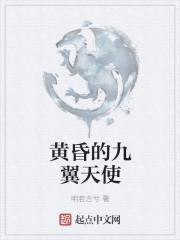 小说《黄昏的九翼天使》