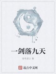 小说《一剑落九天》