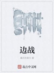 小说《边战》