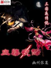 小说《三国夜传说》