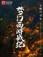 小说《梦幻西游战纪》