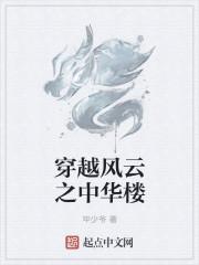 小说《穿越风云之中华楼》