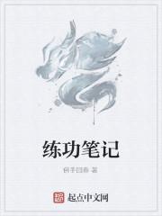 小说《练功笔记》