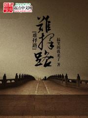 小说《难择路》