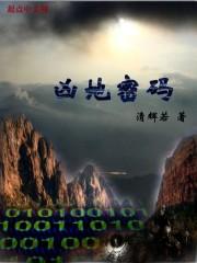 小说《凶地密码》