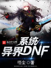小说《异界DNF系统》
