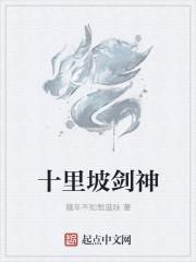 小说《十里坡剑神》