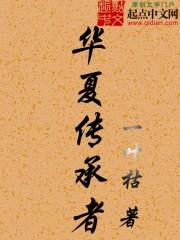 小说《华夏传承者》