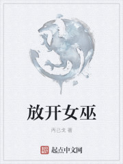 小说《放开女巫》