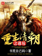 小说《重生清朝之谋反》