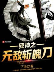 小说《死神之无敌斩魄刀》
