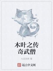 小说《木叶之传奇武僧》