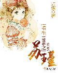 小说《重生1996之苏瑾》
