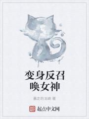 小说《变身反召唤女神》