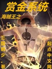 小说《海贼王之赏金系统》