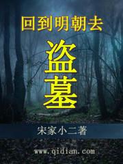 小说《回到明朝去盗墓》